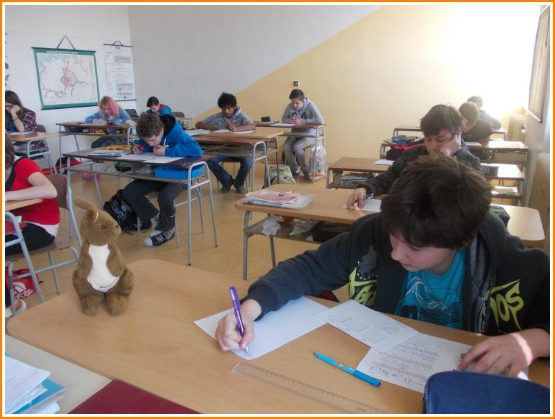 klokan (06).jpg