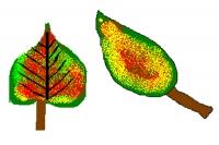 podzim (08).jpg