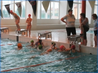 Plavání (03).jpg
